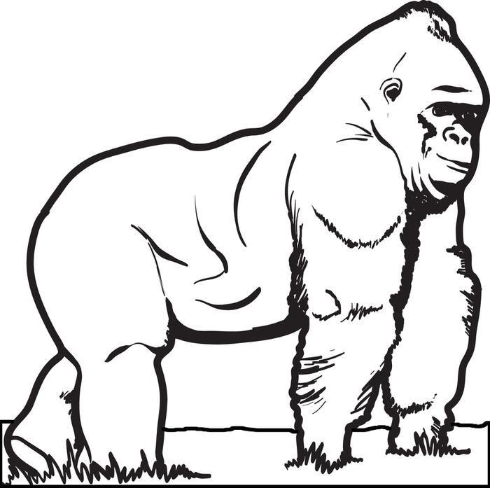 How To Draw Littlefoot by Dawn | Malvorlage dinosaurier ... | 697x700