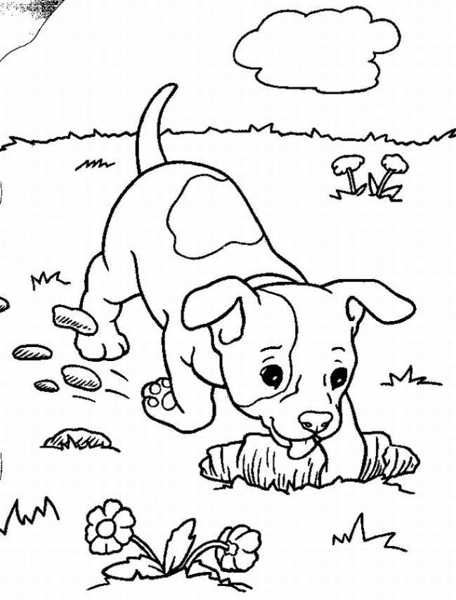Desenhos Do Tintin Para Colorir E Imprimir Desenhos Para Colorir