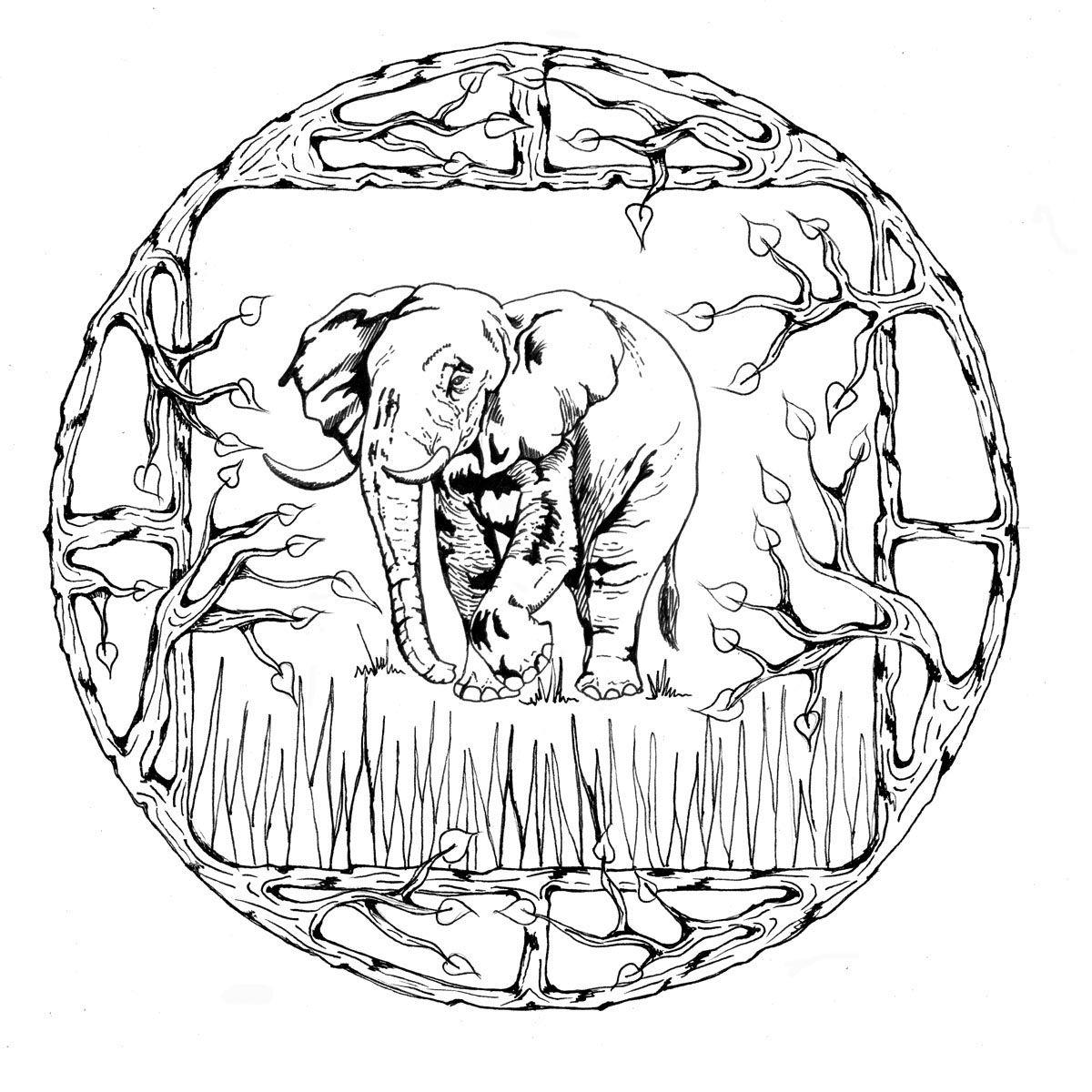 Free Animal Mandalas Coloring Pages Download Free Clip Art Free Clip Art On Clipart Library