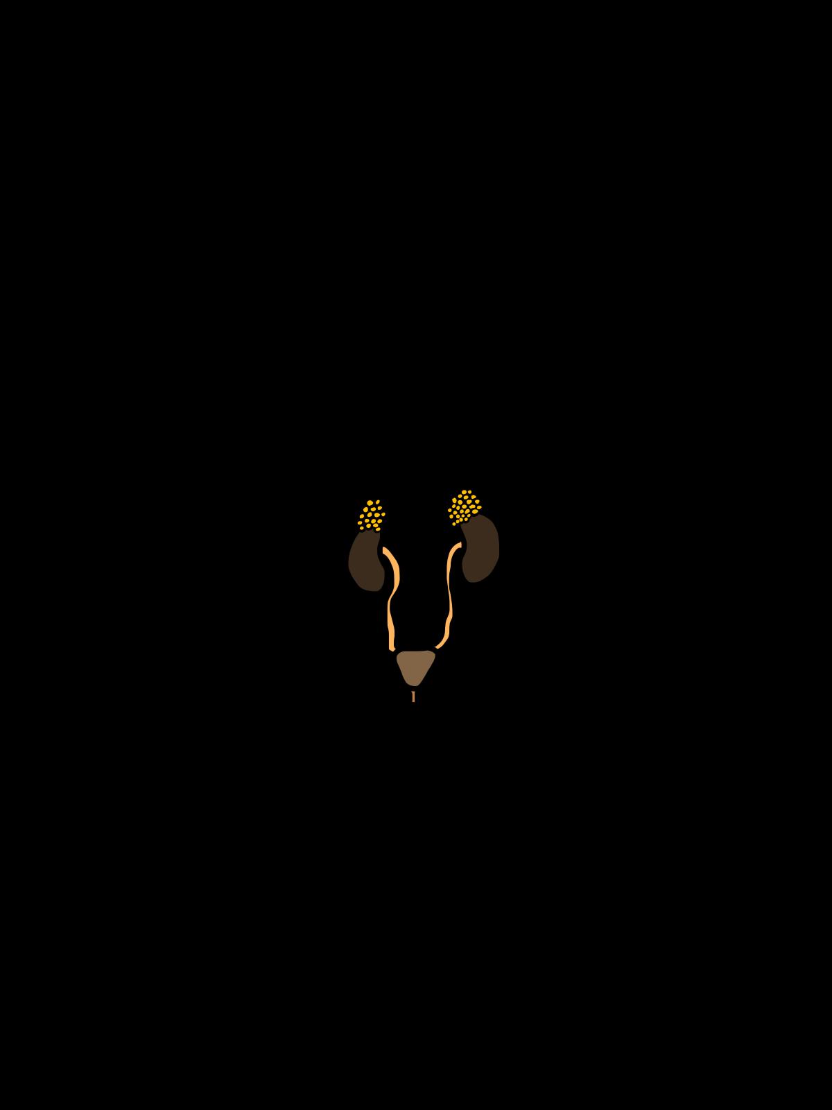 free urinary cliparts  download free clip art  free clip