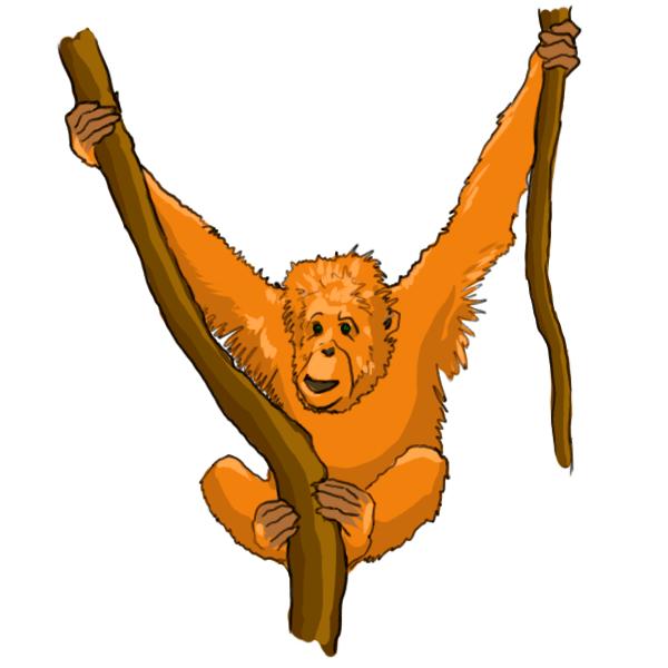 Orangutan Cartoon Free Orangutan ...