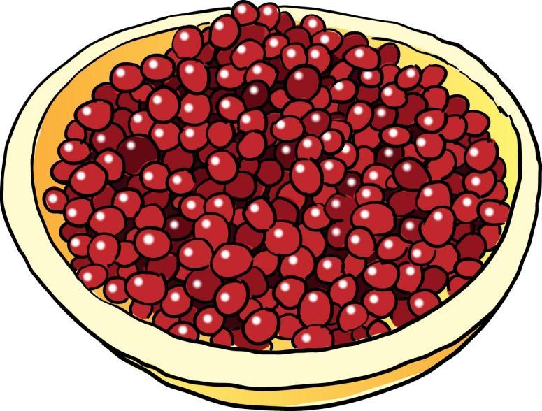 Free Cranberry Cliparts Download Free Clip Art Free Clip