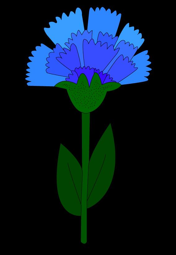 двуглавый орел картинки цветов тюльпан ромашка василек гвоздика подсолнух светлая водолазка рельефной