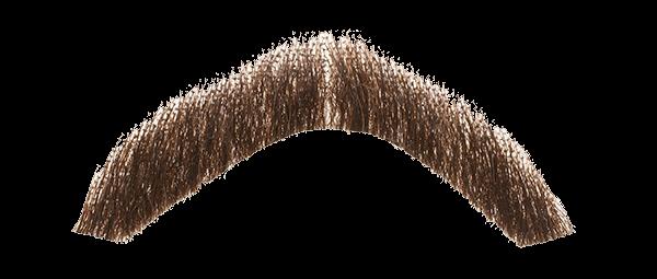 Free Moustache PNG Transparent Images, Download Free Clip ...