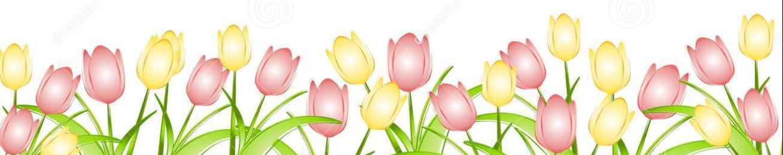 Image result for spring png