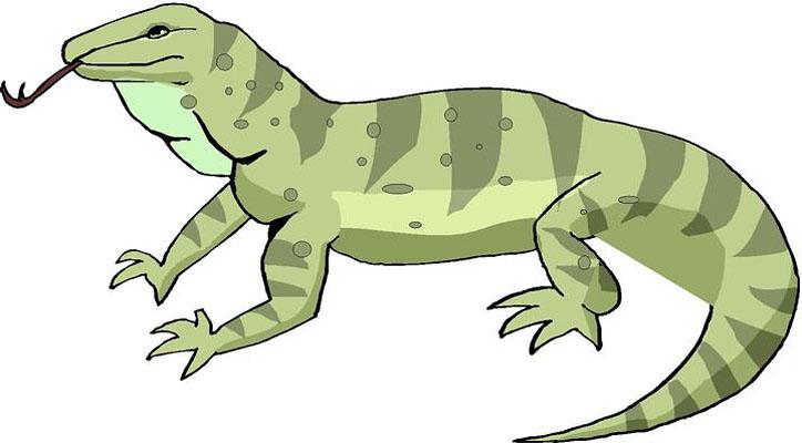 Free Lizard Images Download Free Clip Art Free Clip Art