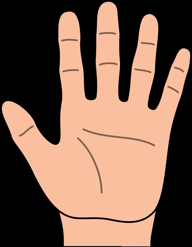 √ Fingers Clip Art