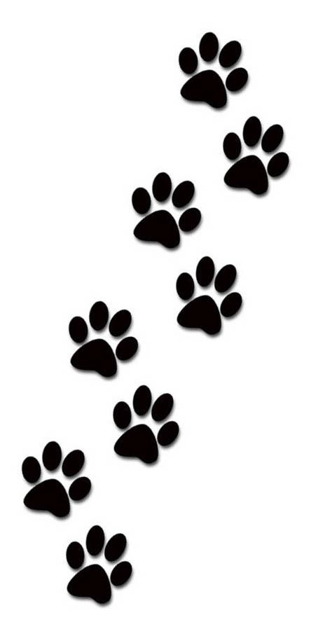 Dog Paw Print Viralnova
