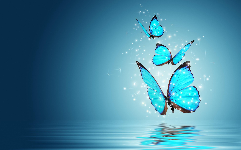 Free Blue Butterfly Download Free Clip Art Free Clip Art
