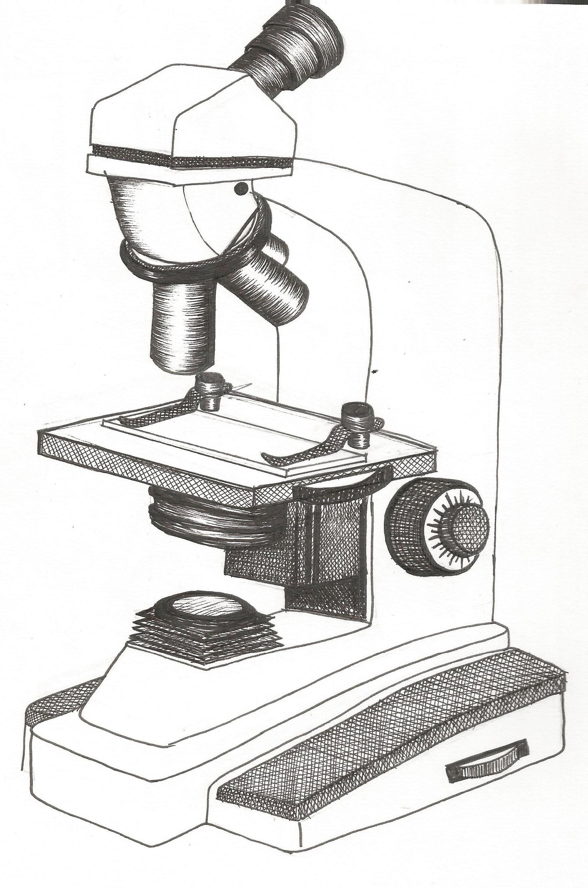 Нарисованные картинки микроскопов