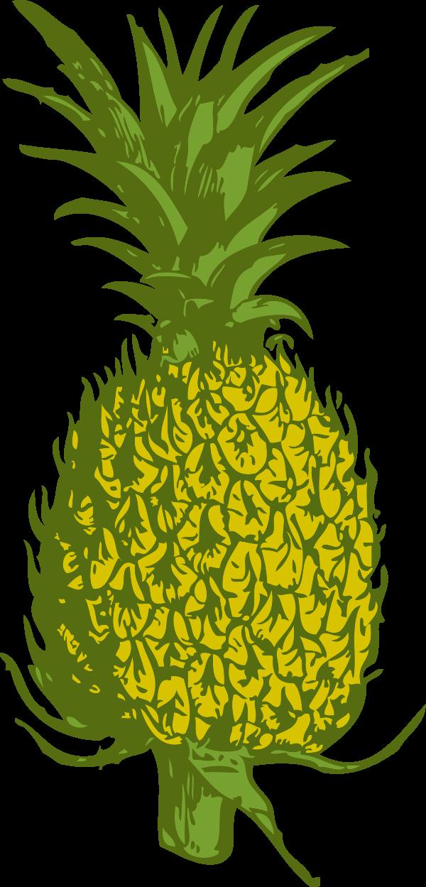 Free Hawaiian Luau Clipart Download Free Clip Art Free