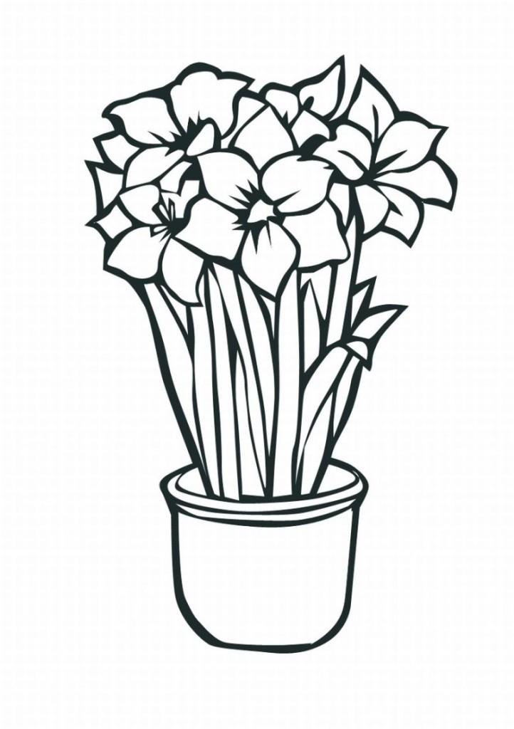 Free Tropical Flower Drawings