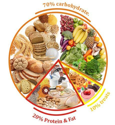 Diet Food Programme