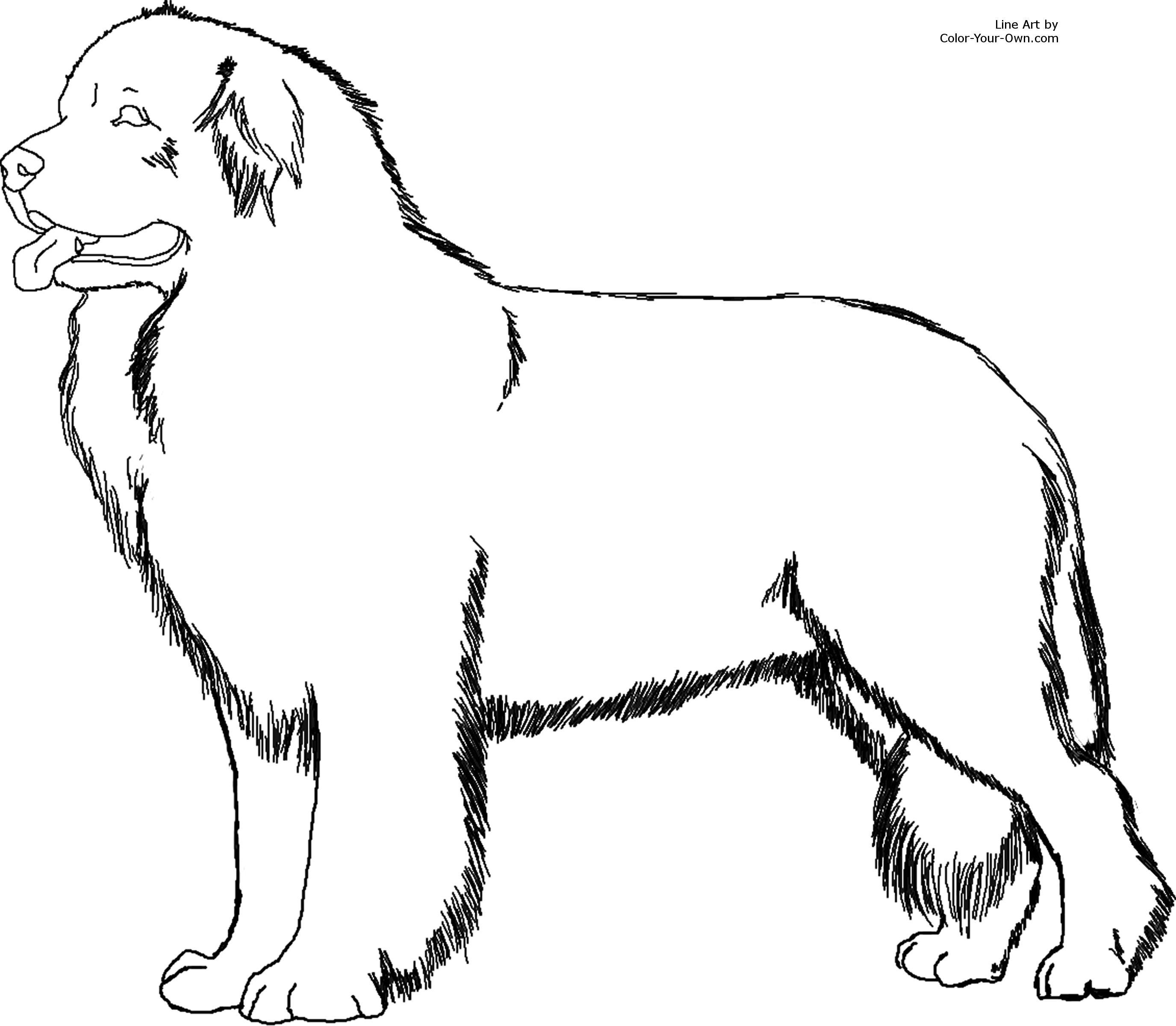 Free Dog Line Art Download Free