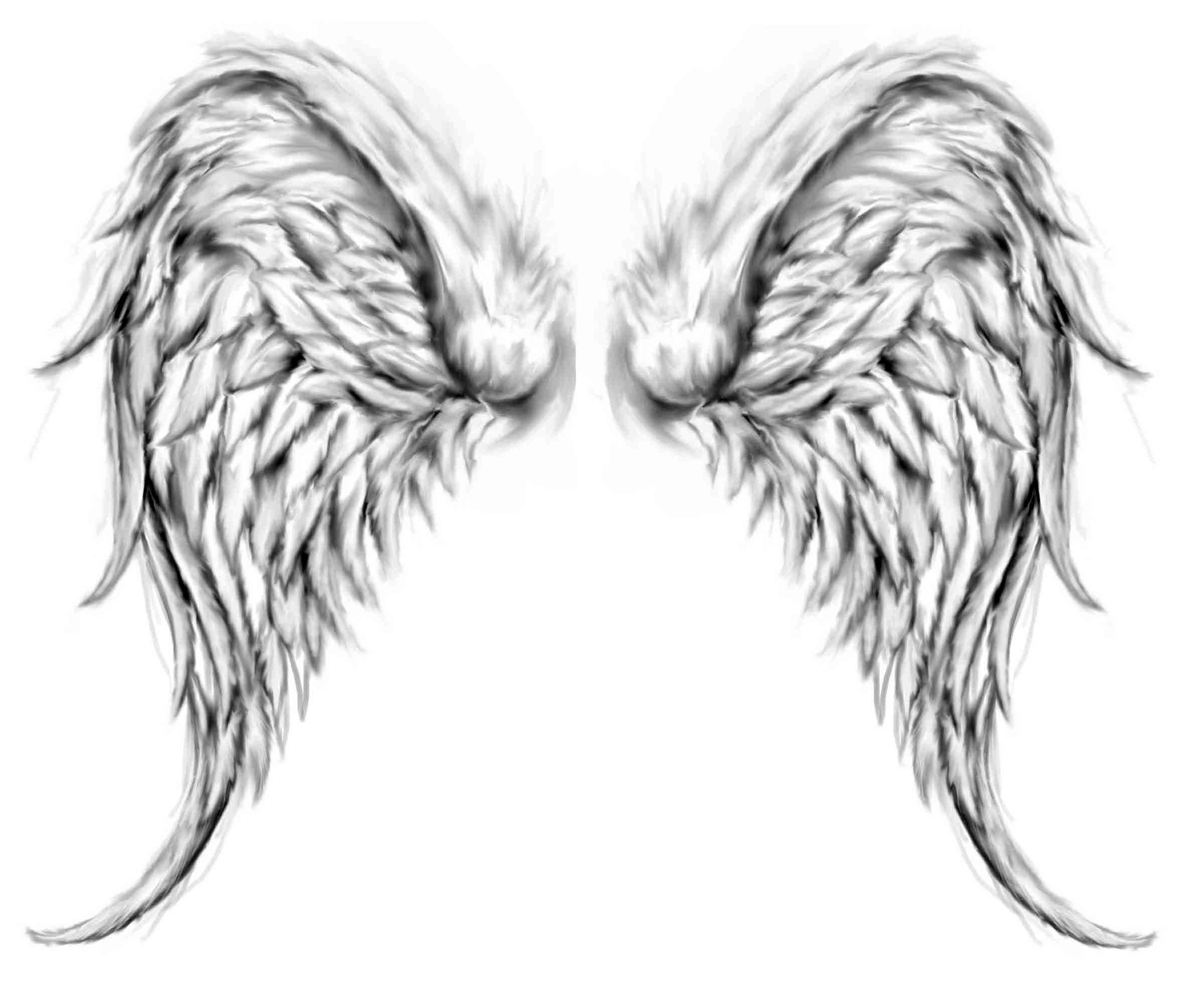 28 Angel Drawings Free Drawings Download: Free Angel Wings, Download Free Clip Art, Free Clip Art On