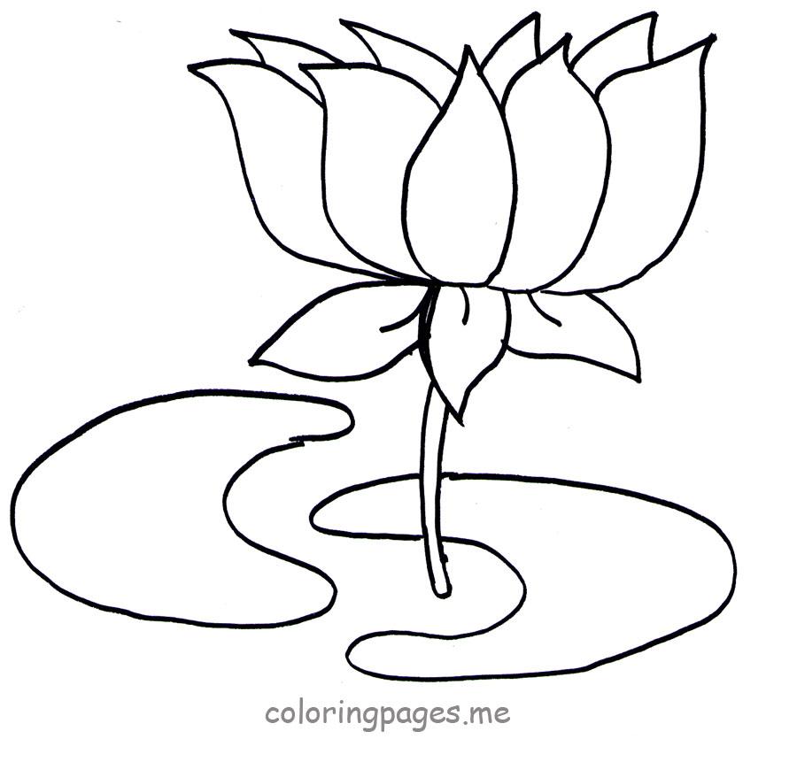 Free Lotus Outline Download Free Clip Art Free Clip Art