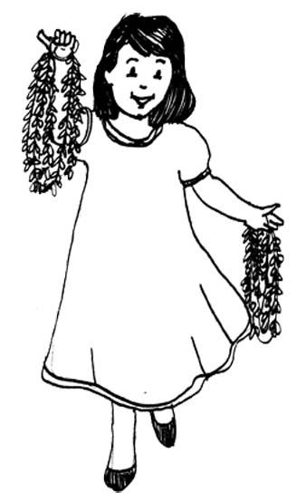 Free Sampaguita Drawing Download Free Clip Art Free Clip