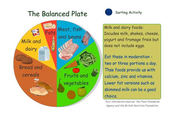 balanced diet chart | viralnova meal plan diagrams