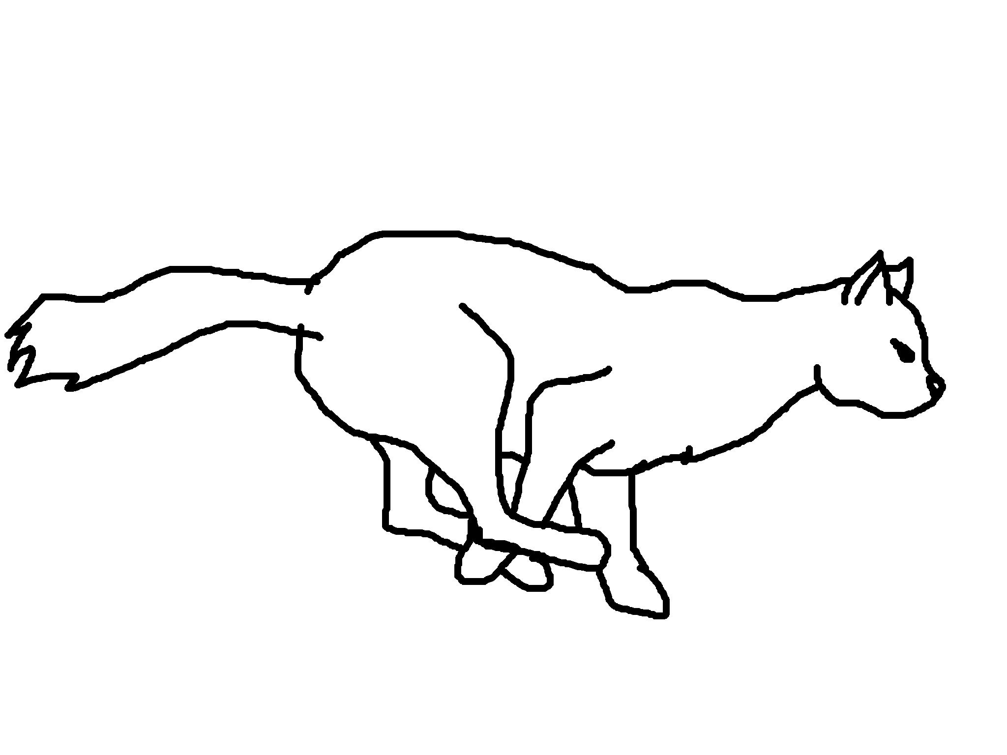 бегущий кот картинки рисунки девушка овечкина