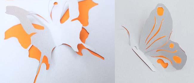 Butterfly Cut Outs Jpg