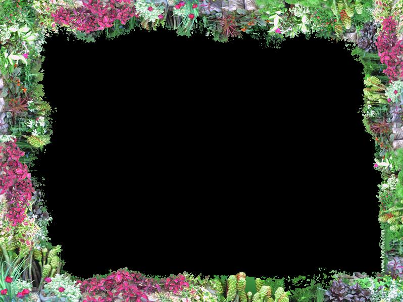 Free Flower Border Download Free Clip Art Free Clip Art
