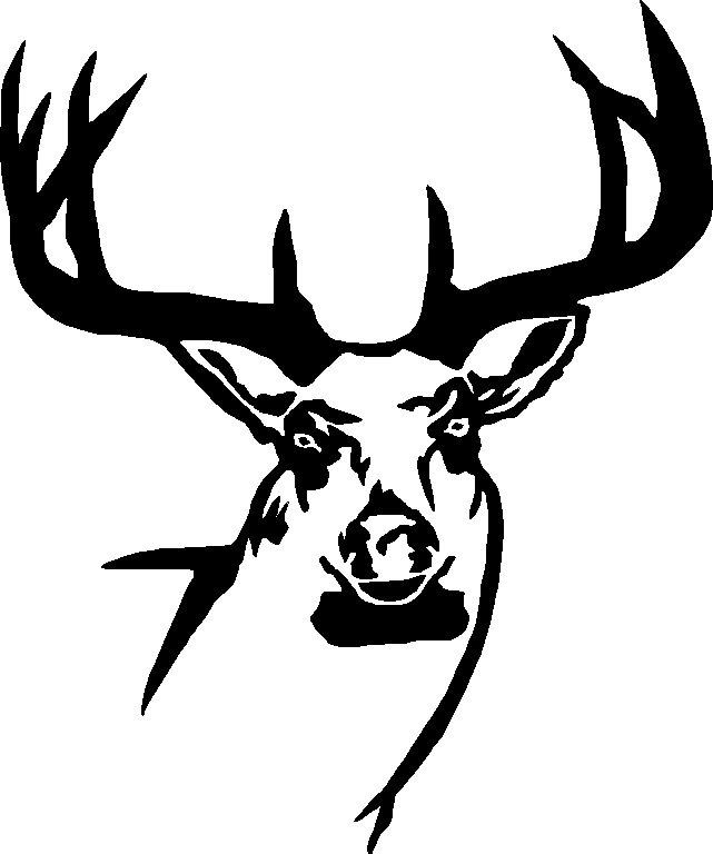 Free Drawings Of Deer Skulls Download Free Clip Art Free