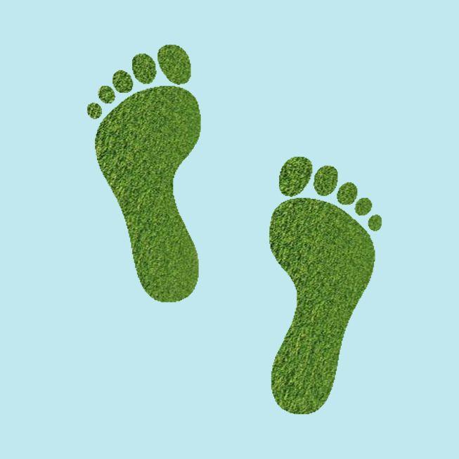ecological footprint eesc glossaries. Black Bedroom Furniture Sets. Home Design Ideas