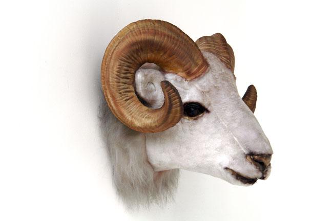 Pop Art Decoration Animals Mounted Heads Ram Head Mount Wall