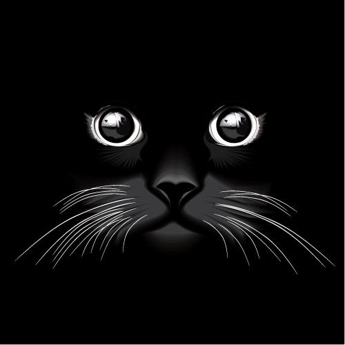 free cat head silhouette  download free clip art  free