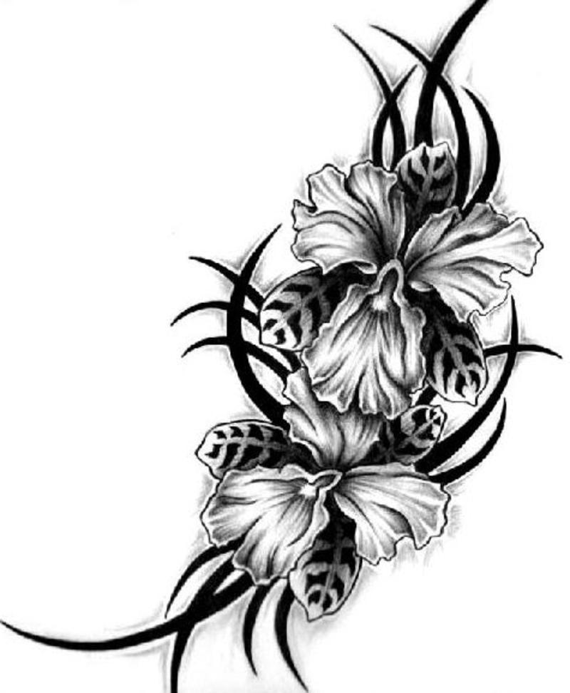 24 Black And White Tattoo Designs Ideas: Hawaiian Flower Tattoo Designs