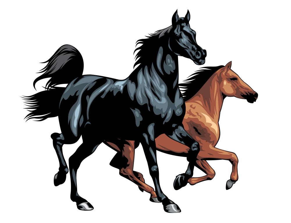 лошади вектор картинки волосы
