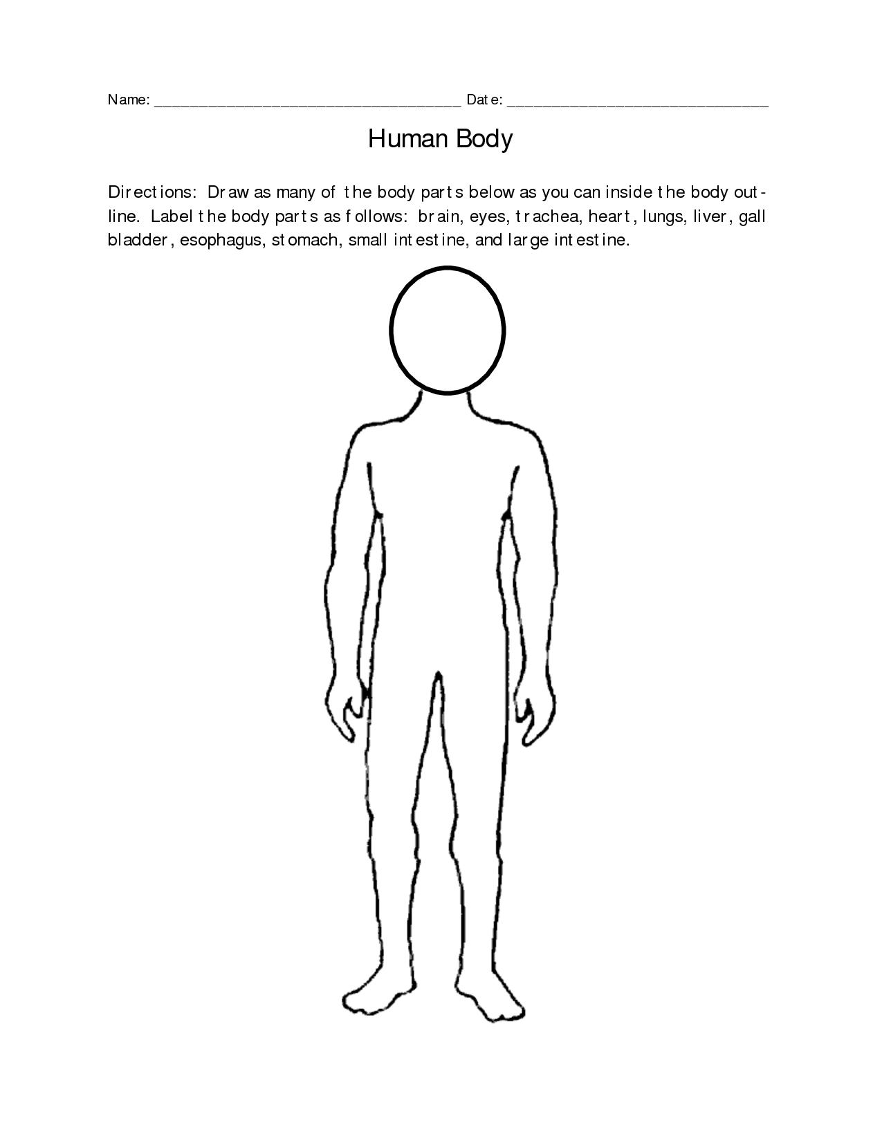 blank-human-body-outline-636 jpg