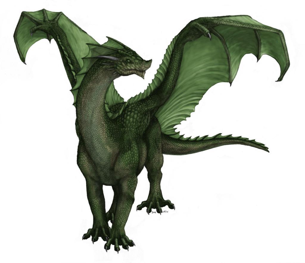 green dragon dragons photo  21749708  fanpop clip dragon clipart free border dragon clipart free black and white
