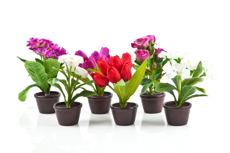 Unique Flower Pots Flower With Pot