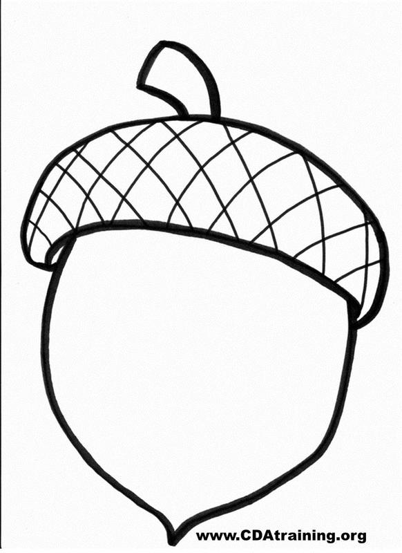 Free Acorn Drawing Download Free Clip Art Free Clip Art