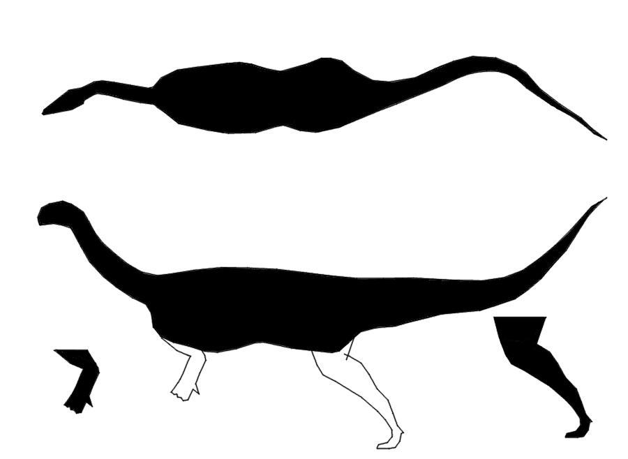 free unlabeled eye diagram  download free clip art  free