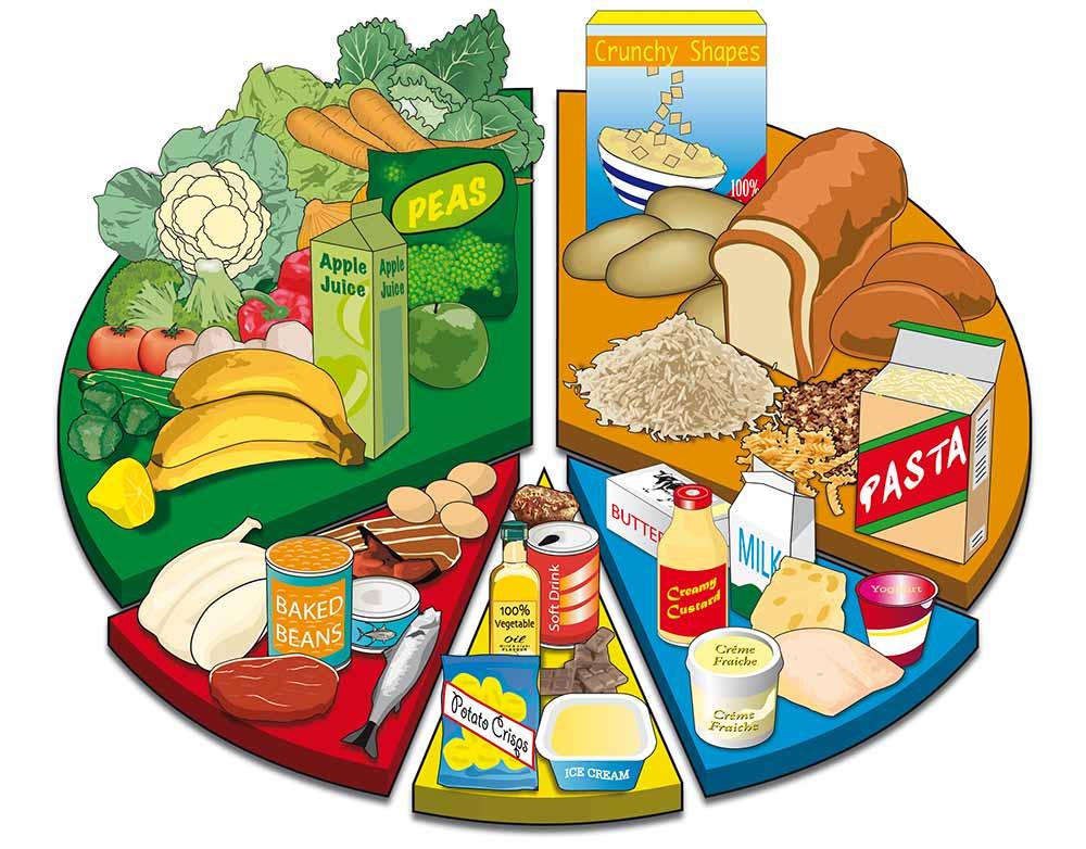 Free Balanced Diet Chart, Download Free Clip Art, Free ...