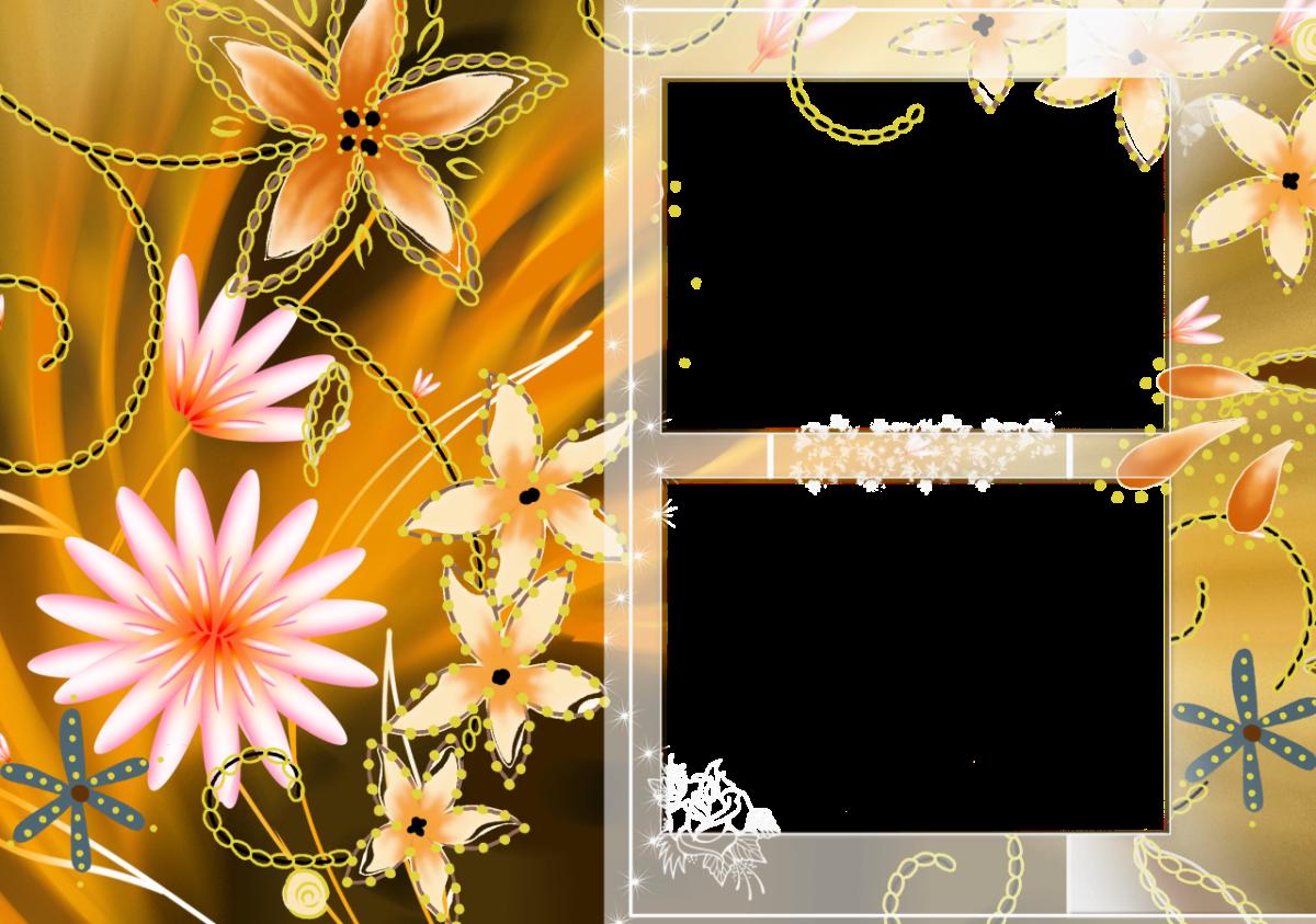 Transparent PNG Frames