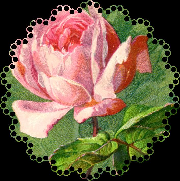 Free Vintage Roses Images, Download Free Clip Art, Free