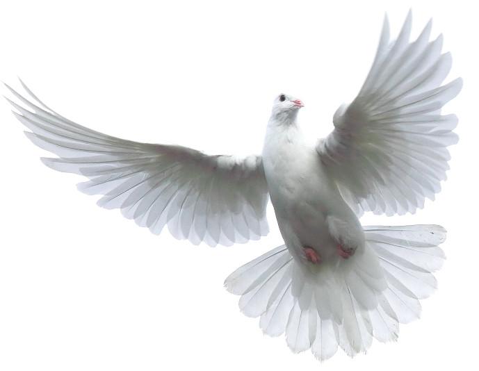 Free Holy Spirit, Download Free Clip Art, Free Clip Art On
