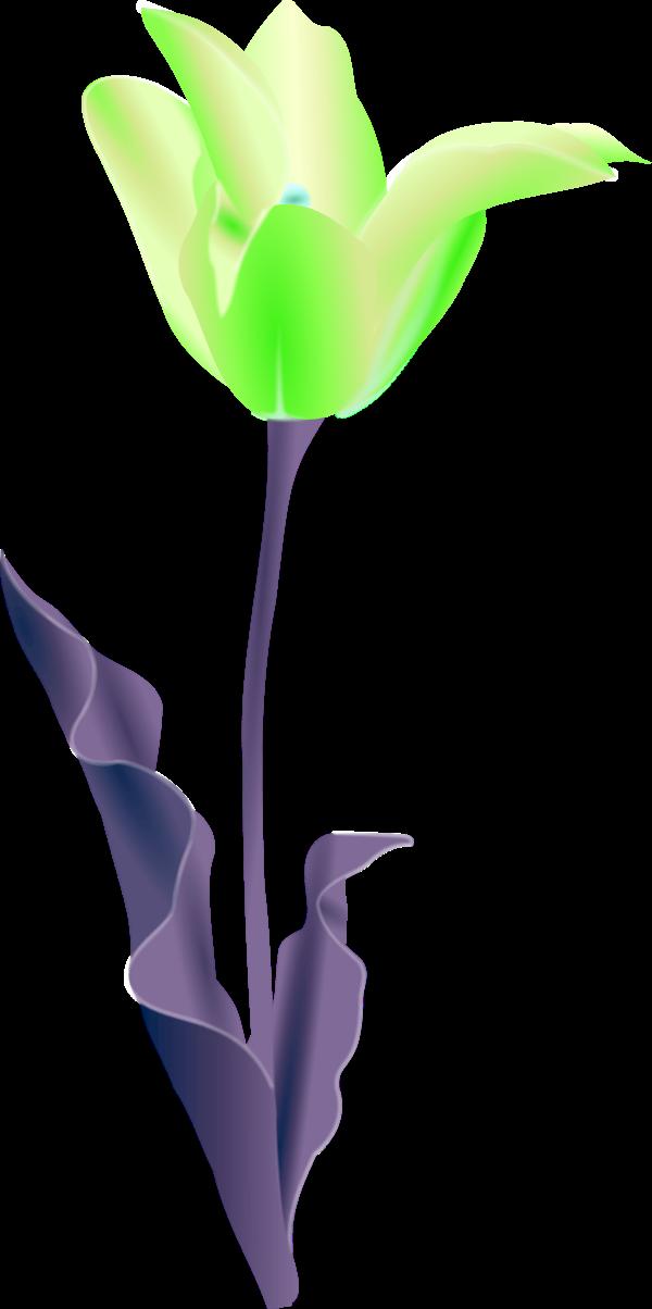 Free Flower Pot Outline Download Free Clip Art Free Clip