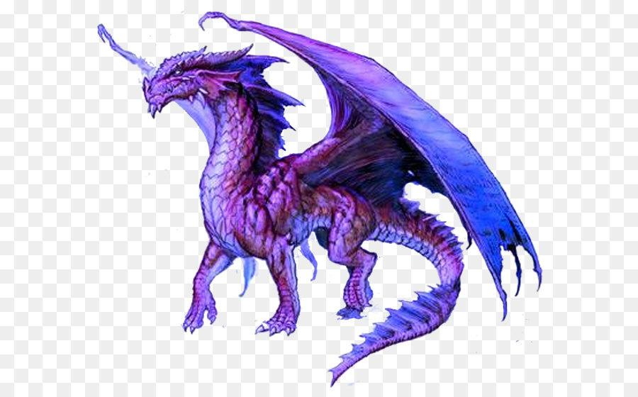 dragon transparent 19