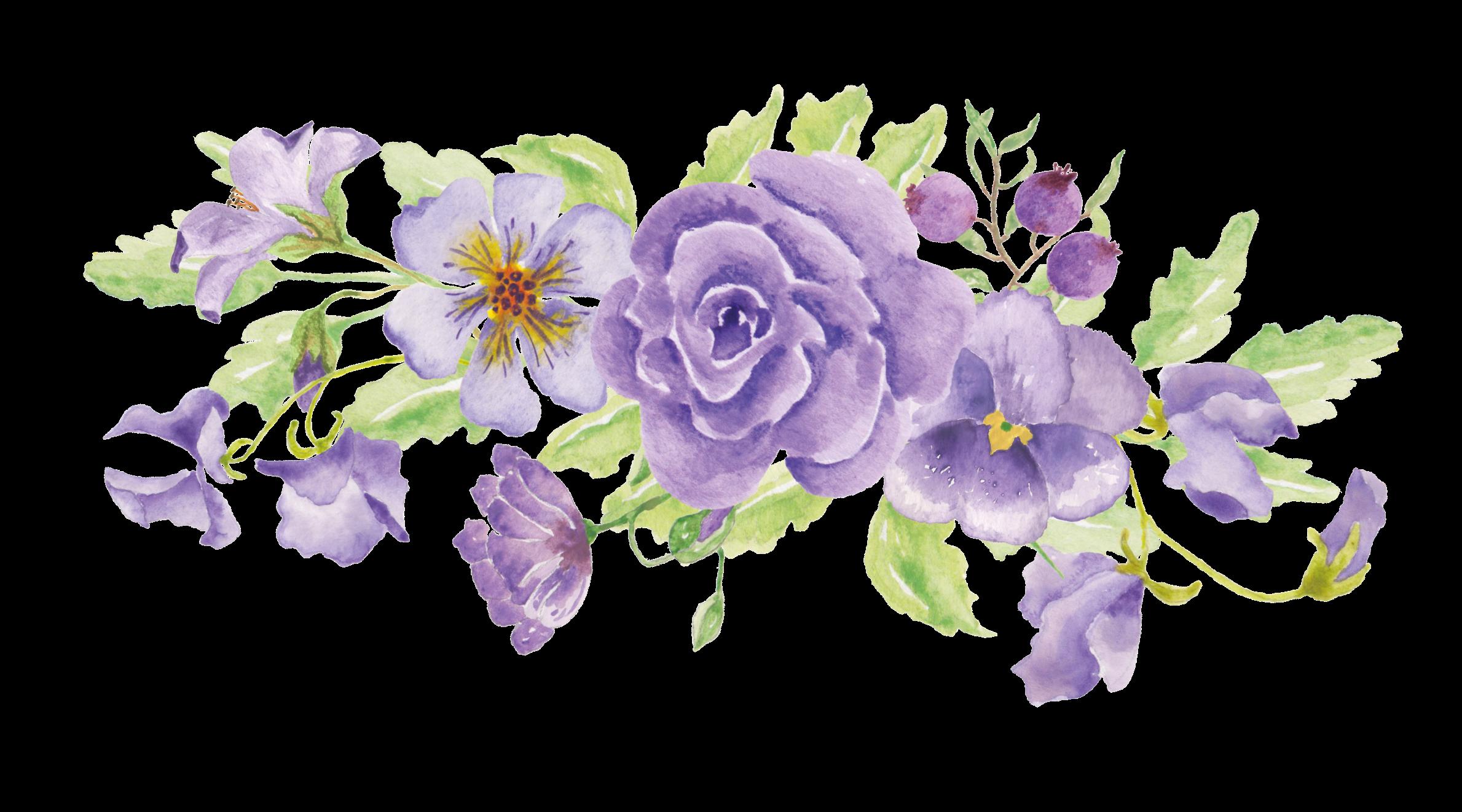 Floral Design Illustration Image Portable Network Graphics Png