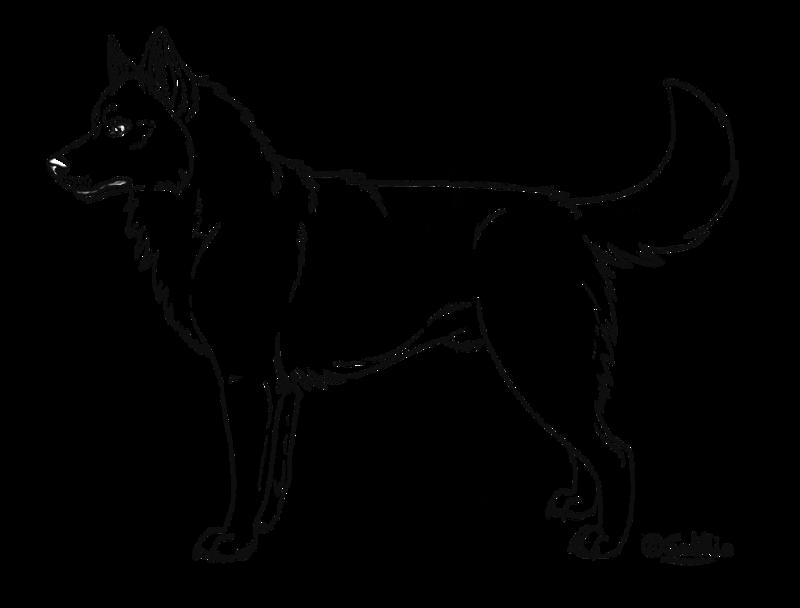Free Siberian Husky Cliparts, Download Free Clip Art, Free ...