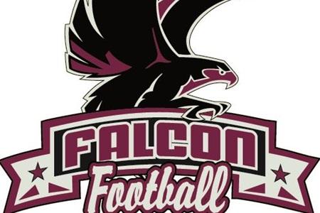 Free Falcon Football Cliparts Download Free Clip Art
