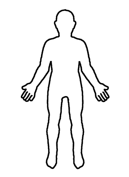 free shoulders cliparts diagram  download free clip art