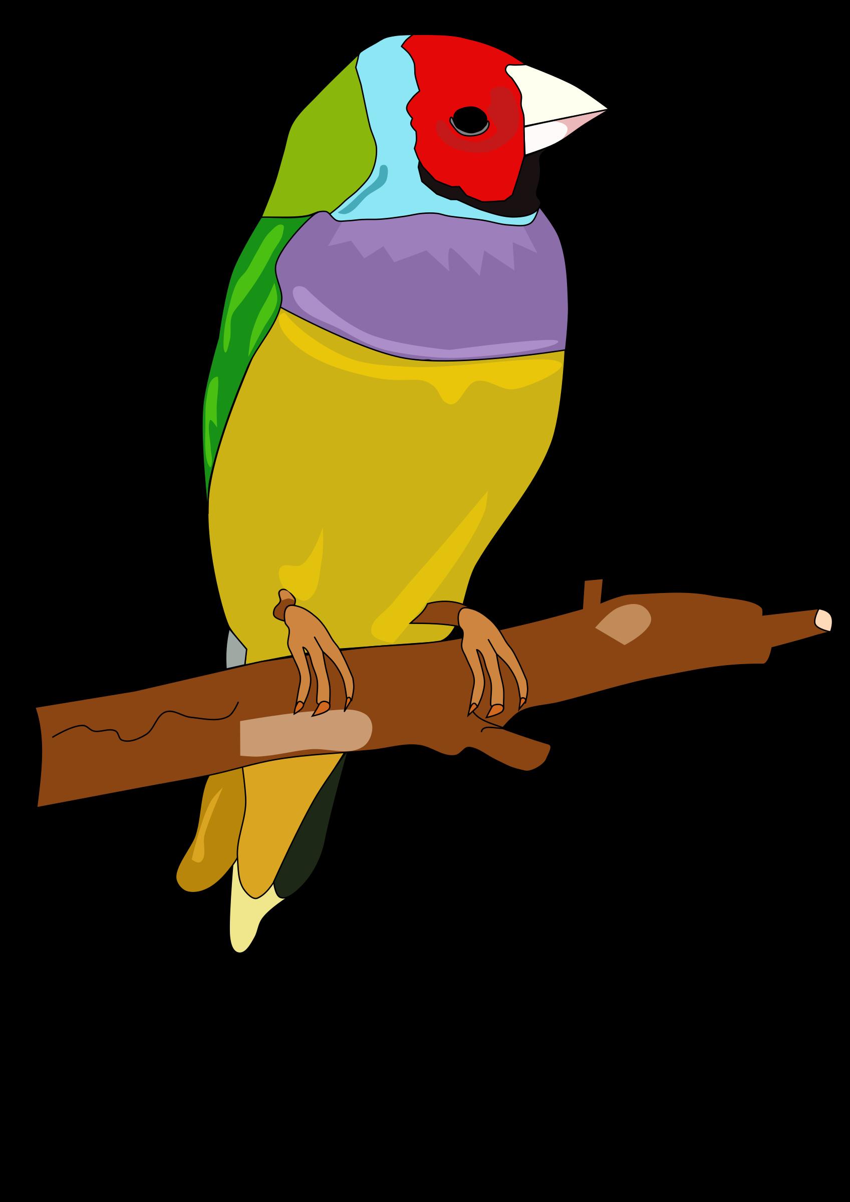 Free Parrot Toy Clipar...