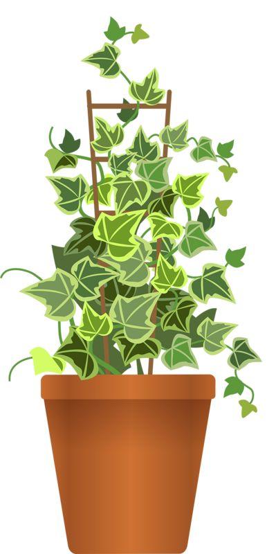 Free Planter Box Cliparts Download Free Clip Art Free