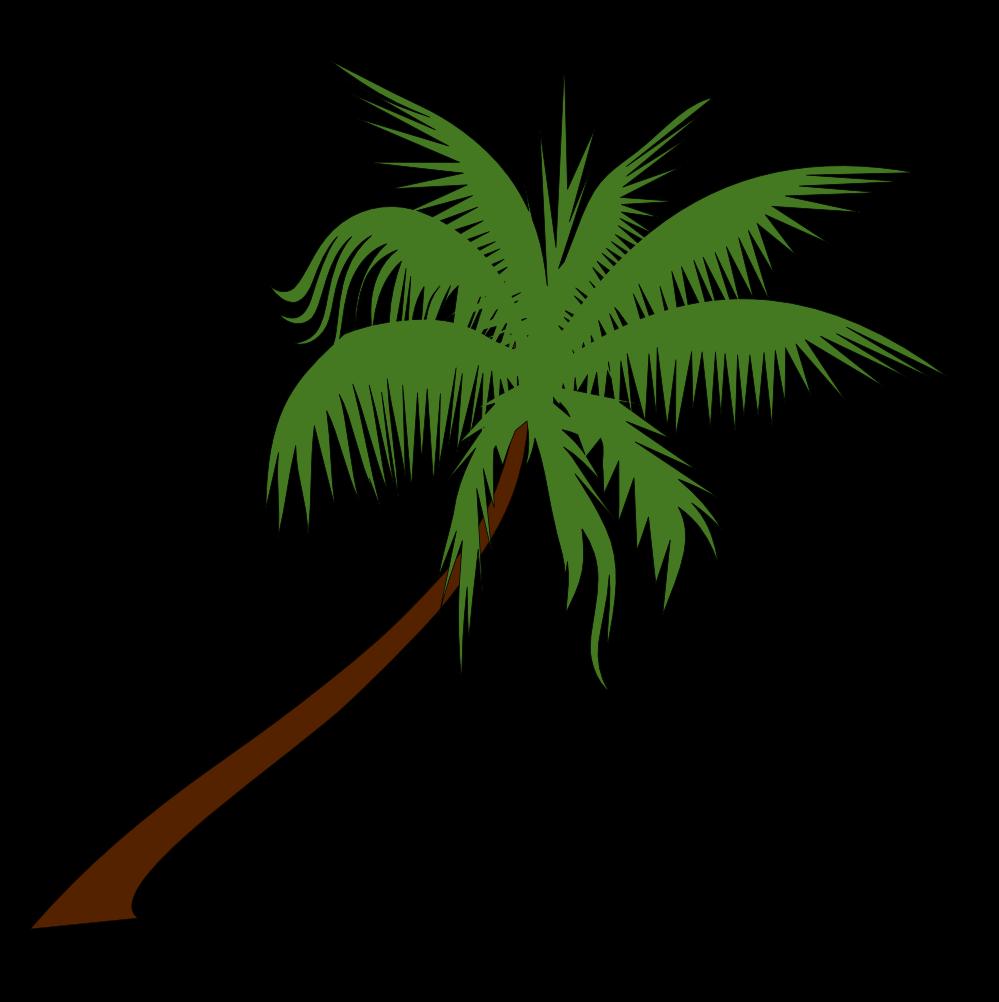 Free Palm Tree Image