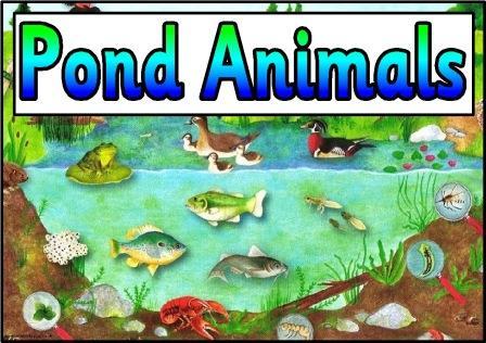 Free Animal Habitat Cliparts, Download Free Clip Art, Free ...